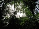 А из шуме излазимо ПРЕД ГРЕБЕН!