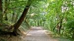 Ту је и стаза здравља за оне који су расположени за шетњу