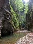 кањон Белог Рзава