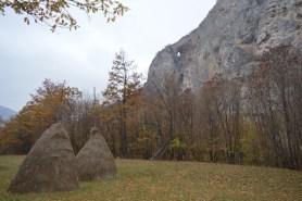 Бушан камен