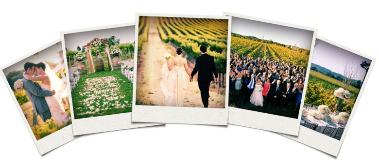 Wine Event Weddings