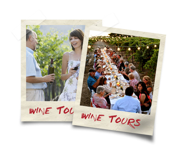 Serbian Wine Tours