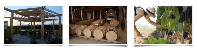 Sirmium Avangarda - Winery Deurić