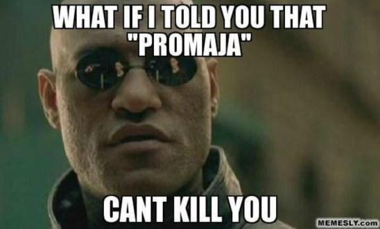 promaja1