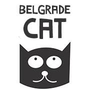 belgrade cat