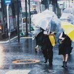 雨でぬれた靴を早く乾かす方法