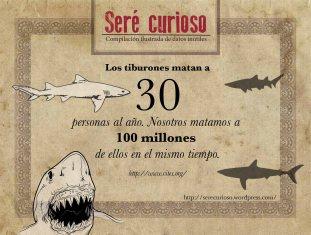 Los tiburones matan a 30 personas al año. Nosotros matamos a 100 millones de ellos en el mismo tiempo.