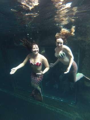 sereias-no-aquario-de-sao-paulo-foto-sereias-do-aquario-de-sao-paulo201412270001