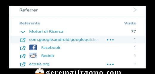 Cosa rappresenta Google Quick Searchbox referral?