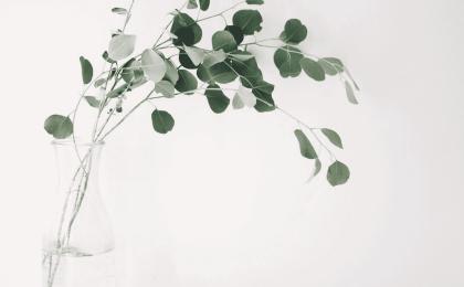 Pourquoi devenir minimaliste ?
