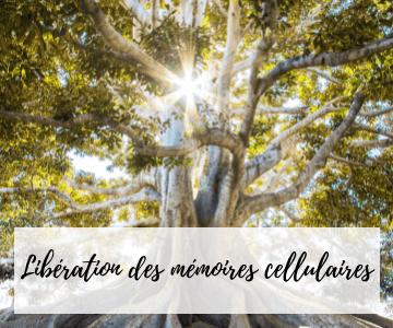 Libération des mémoires cellulaires