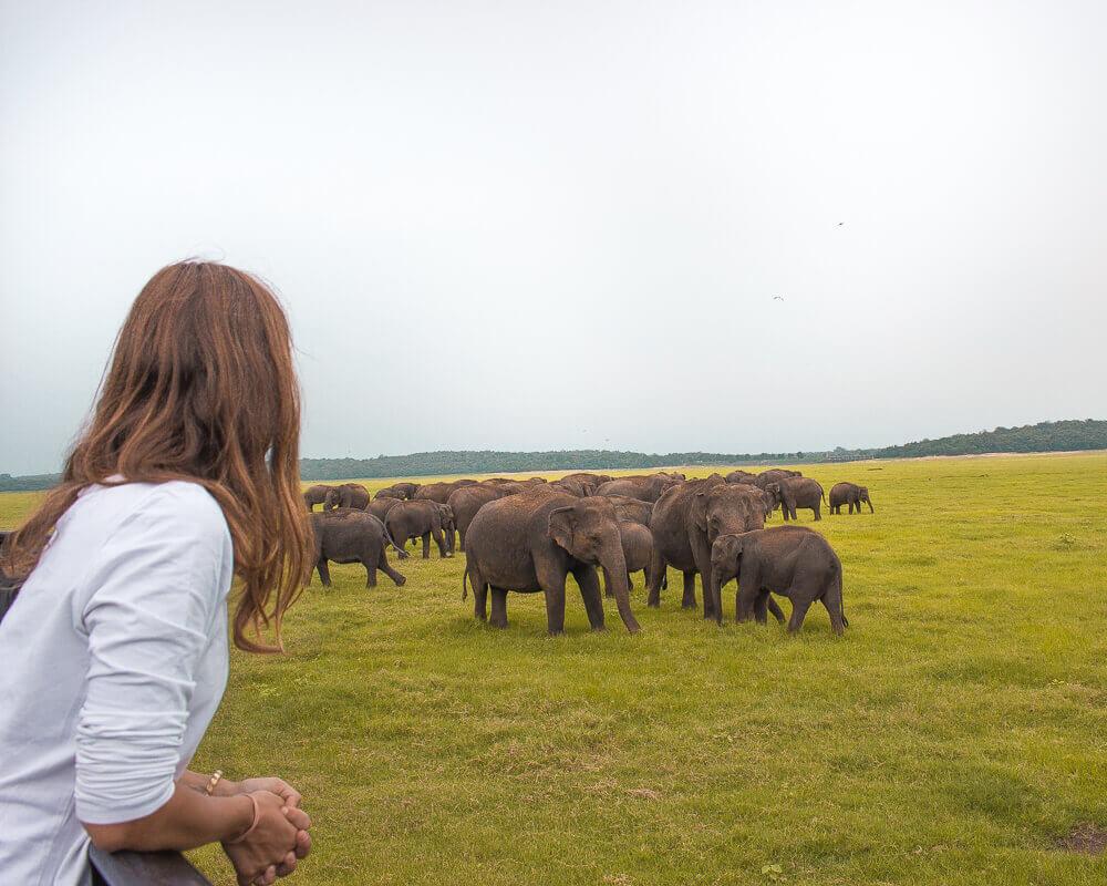 Los mejores Instagram spots en Sri Lanka