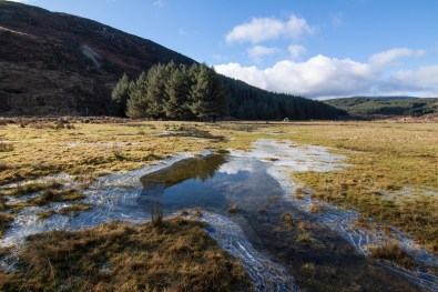 The end of winter at Lough Dan in the Wicklow Mountains.