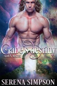 SS_Gabe's Destiny_600x900'
