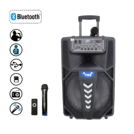 Bluetooth Portable Trolley Speaker Audio USB TF BT Karaoke /USB/TF/AUX/FM Woofer 12″ Sri Lanka