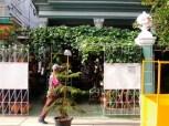 La Habana, tienda de flores 2014