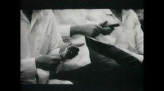 Y… Tenemos sabor, Sara Gomez, claves y cucharas 1967