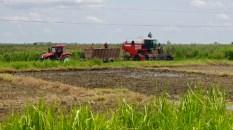 Des moyens techniques flambant neufs dans les champs de canne.