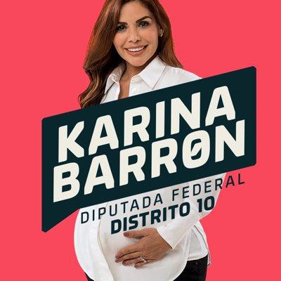 ¿En qué han gastado los candidatos a diputados federales? Karina Barron