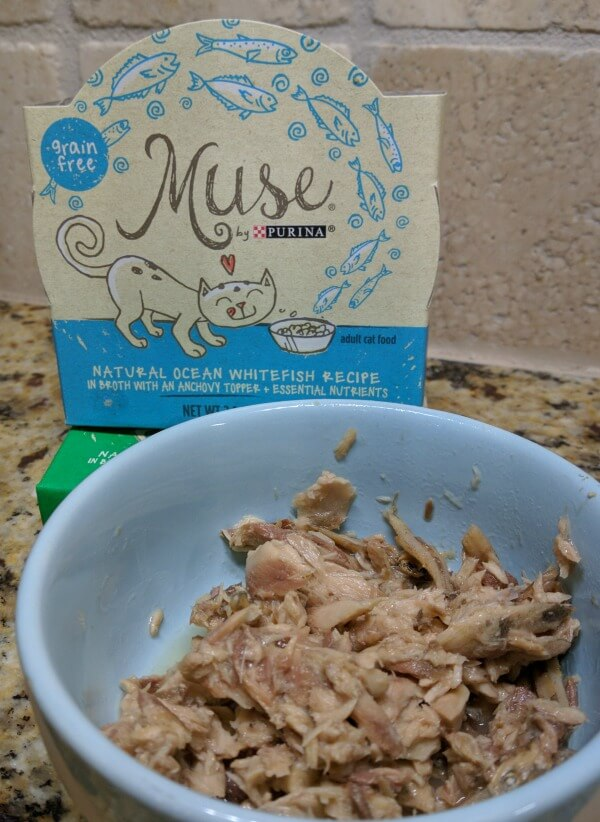 muse cat food