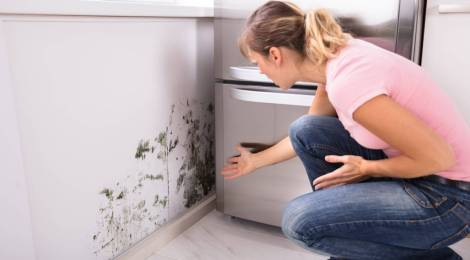 3 formas de hacer deshumidificadores caseros para tu hogar