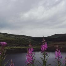 Butterley Reservoir.