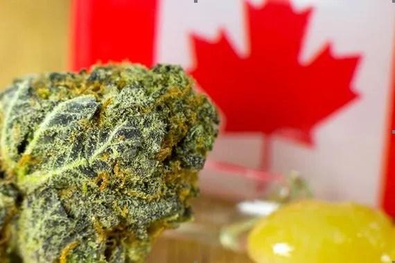 Canada legalization Serene Farms Online Dispensary
