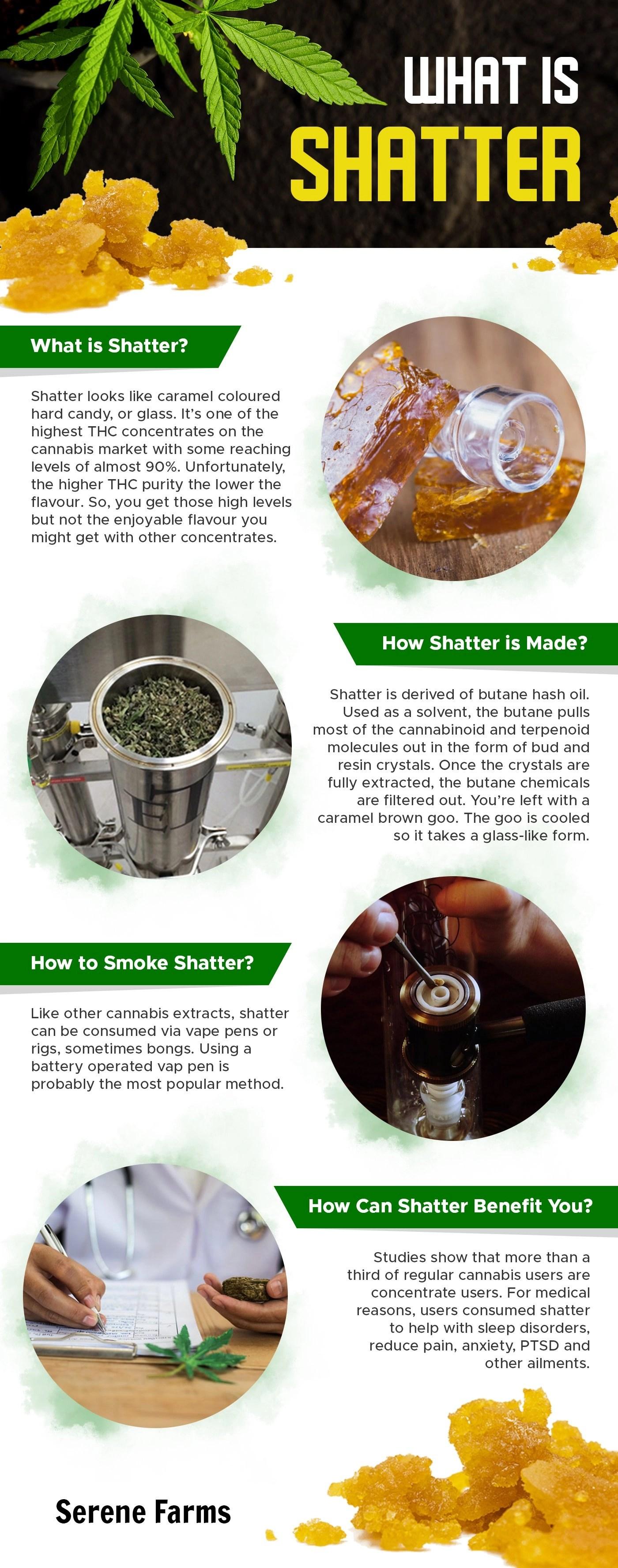 cannabis 101 info graph article Serene Farms Online Dispensary