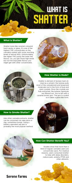 cannabis 101 info graph article Serene Farms Online Dispensary