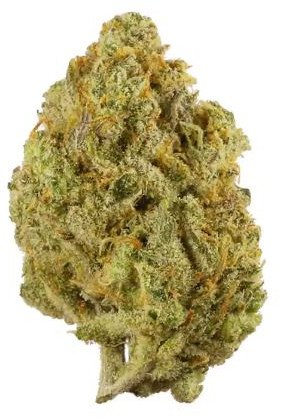 Lemon Haze flowers Serene Farms Online Dispensary