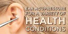 ear seed seesions