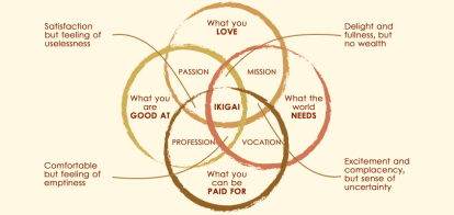 Ikigai to select Niche