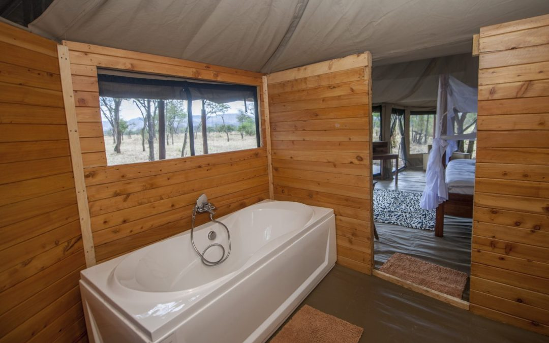 Luxury Camping in Serengeti, What Is It Like?