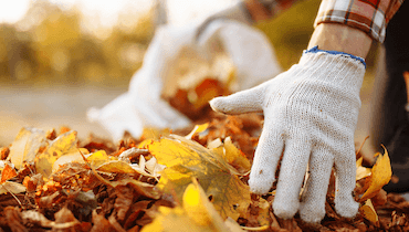 best spring and fall cleanup company in buffalo mn