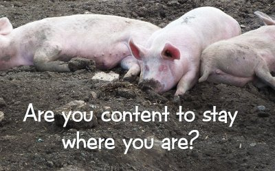 Are you content to stay where you are?