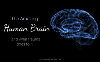 The Effects of Trauma on Brain Function