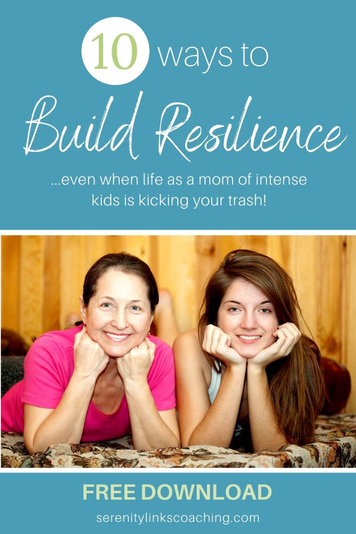 Building Resilience - free download for moms of kids affected by complex ptsd, reactive attachment disorder, fetal alcohol syndrome, or other issues related to developmental trauma and early childhood trauma exposure