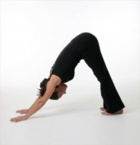 Yoga For Flexibility