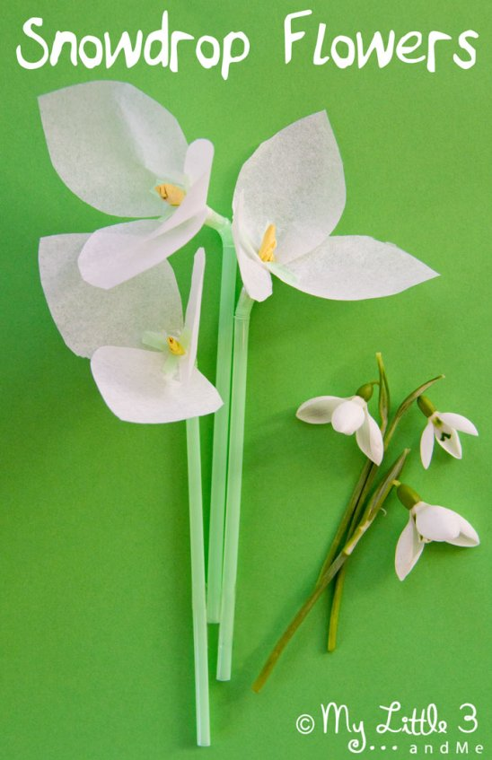 Snowdrop-Flower-Craft-for-Kids
