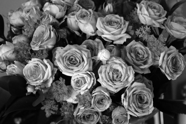 appleyard flowers 3
