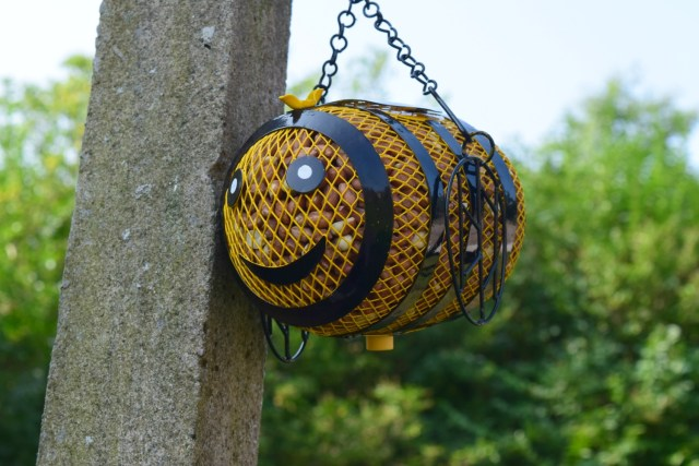 bee-bird-feeder-3