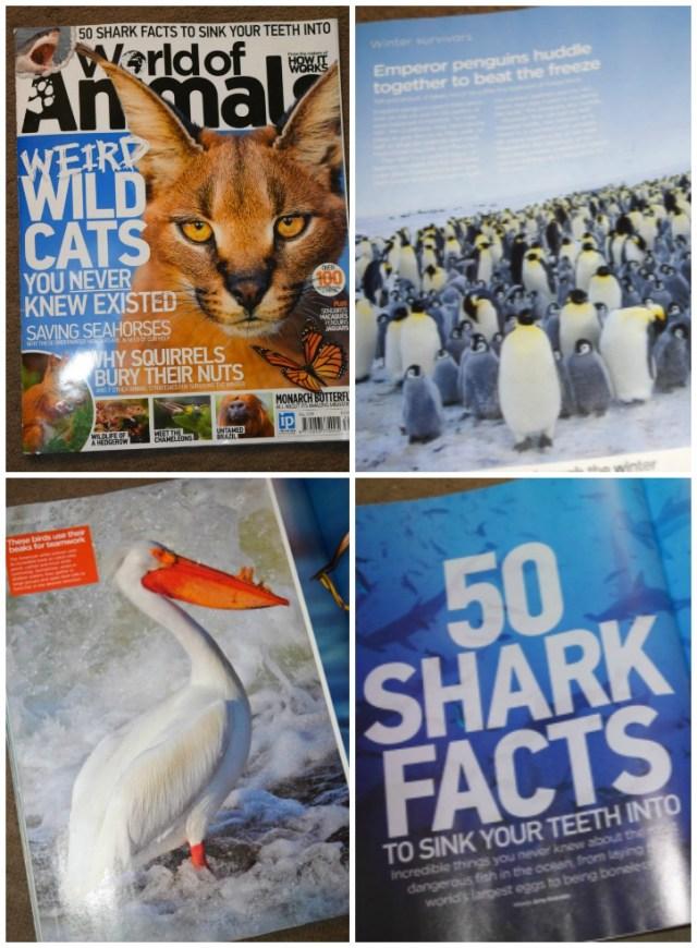 World of animals magazine review