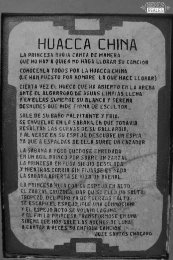 huacachina (6)