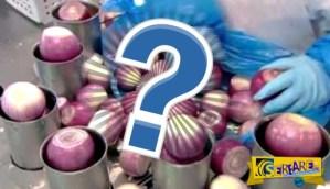 Μέσα σε ένα εργοστάσιο επεξεργασίας κρεμμυδιών! – Πως φτάνουν στο σούπερ μάρκετ σε διάφορες μορφές …
