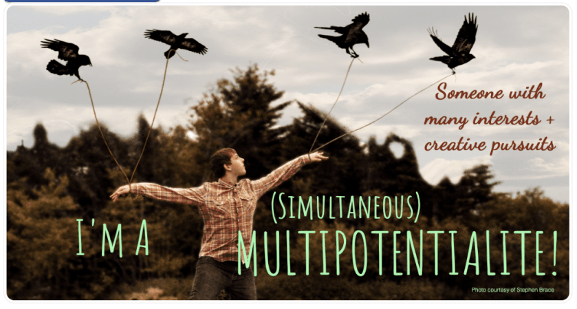 I'm A Multipotentialite