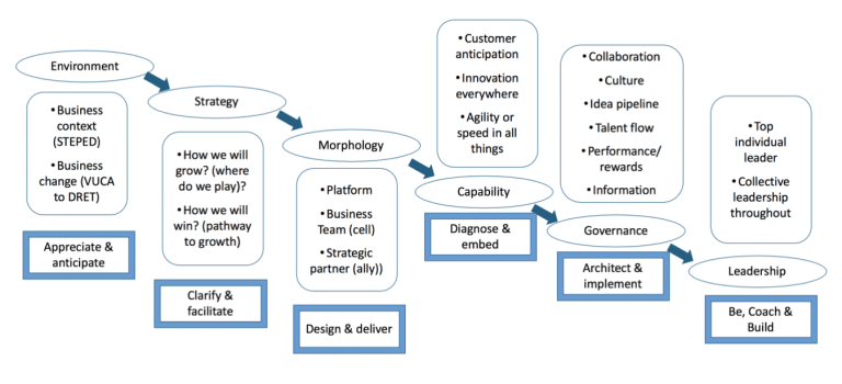 Emerging Market Oriented Ecosystems by Dave Ulrich