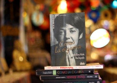 Como la cigarra. María Elena Wlash, una biografía (1993)