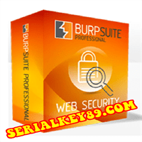 Burp Suite Professional 2021.4.2