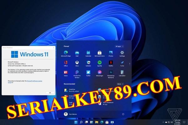 Windows 11 Pro build 21996 setup