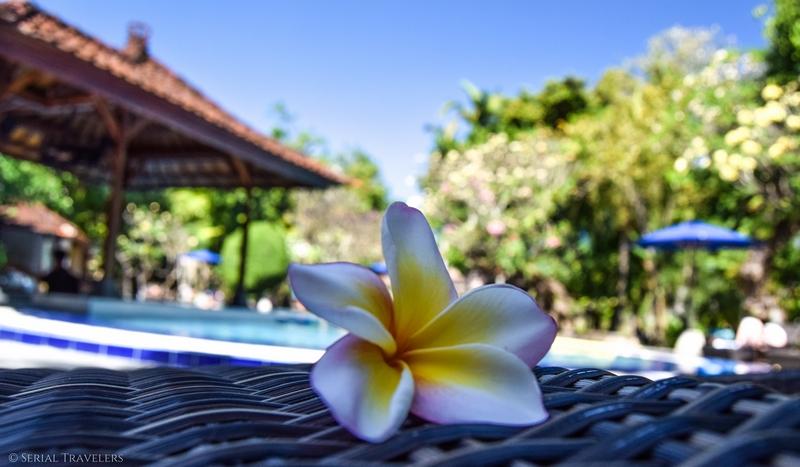 Les fleurs et plantes à Bali